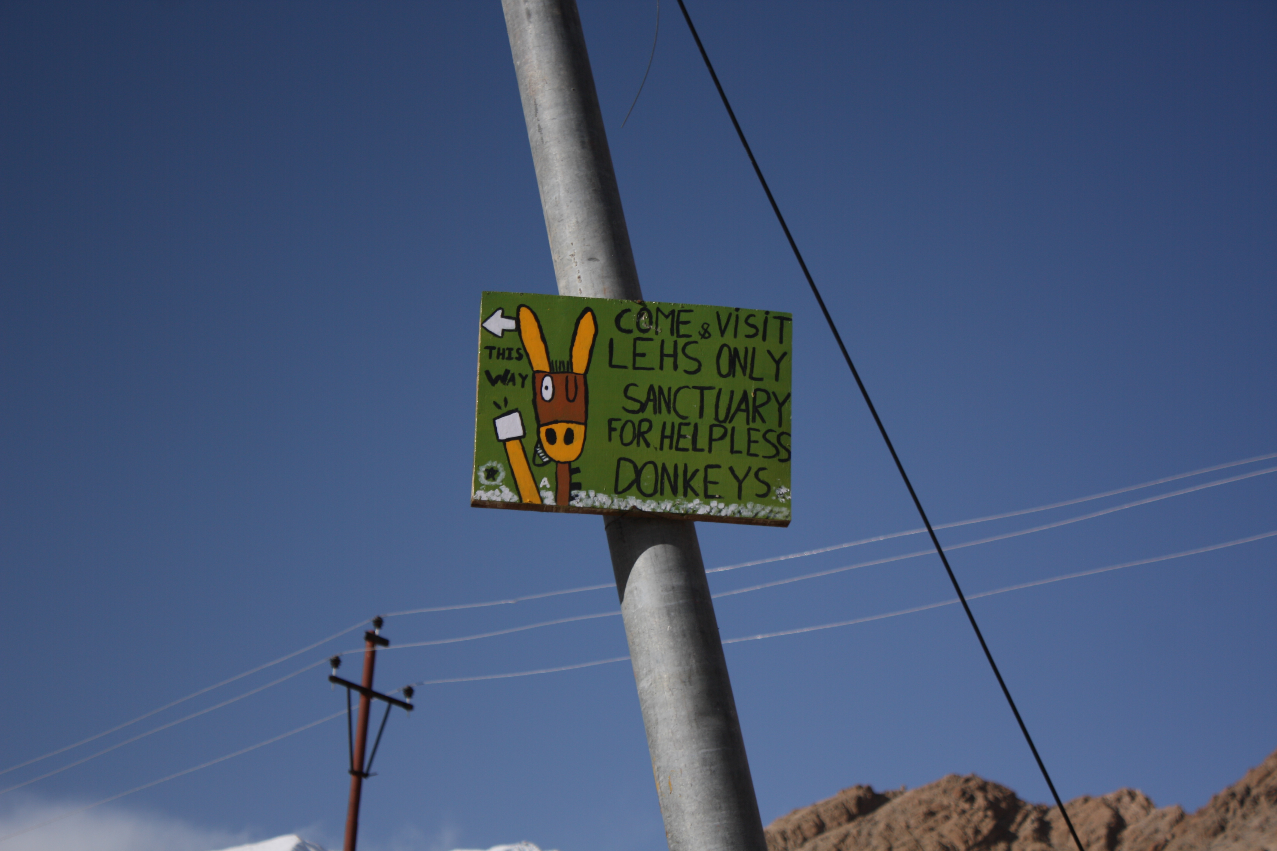 табличка, указывающая путь на ослиную ферму